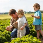 Farmers' share of food dollar sharply declining…along with farm incomes