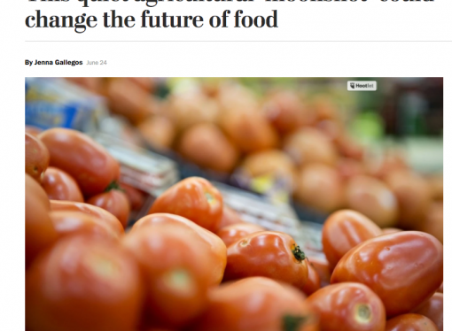 Washington Post–how will we feed 9 billion?
