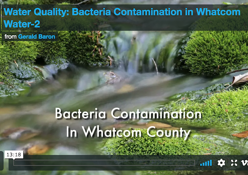 Bacteria Sources Video