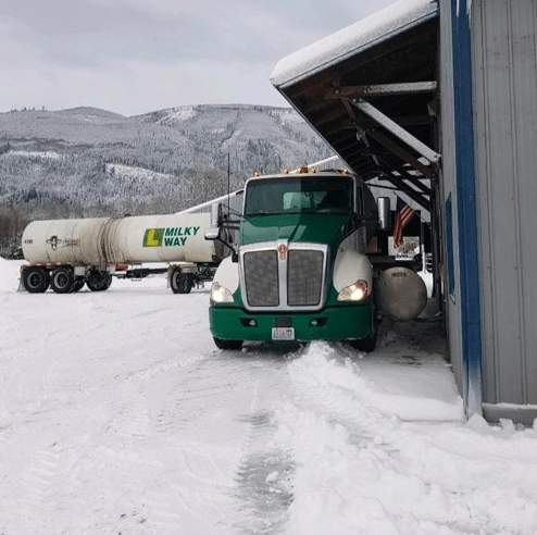 How Whatcom dairies made it through the winter storm