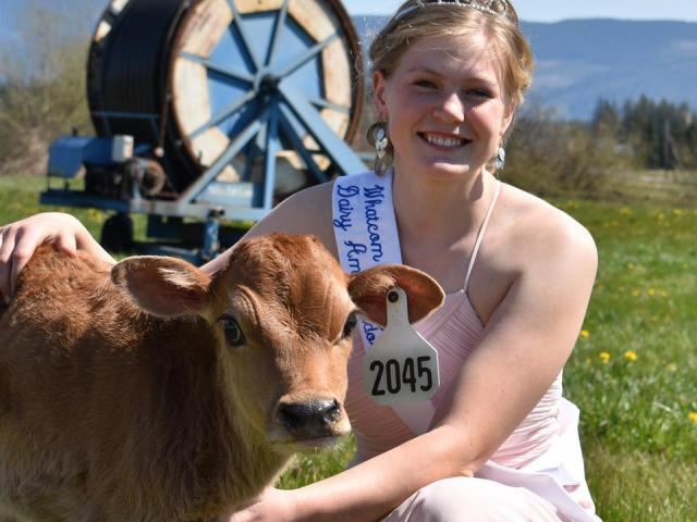 New Whatcom County Dairy Ambassador Continues the Tradition in a Different Fashion
