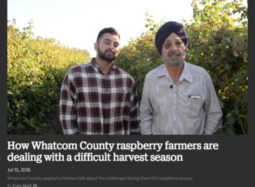 Raspberry Import Crisis