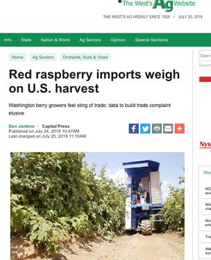 Raspberry Crisis Reports