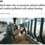 Continual innovation drives dairy farm sustainability