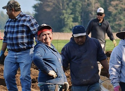 Want to help farm workers? Here's how